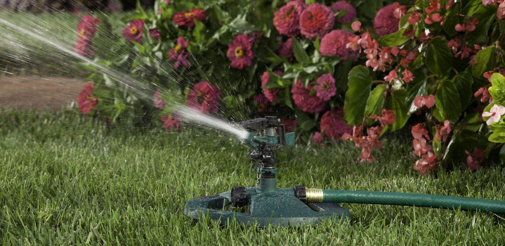 lawn being watered by a sprinkler system